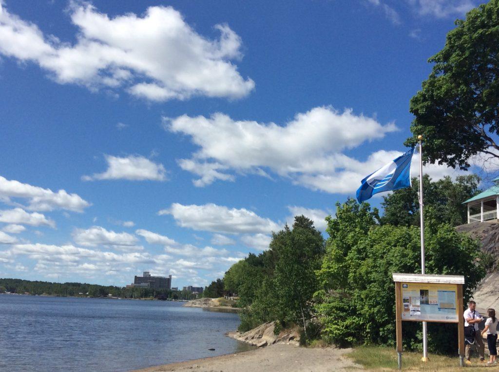 Blue Flag Blog1