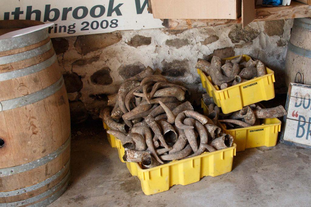 Southbrook_vineyard-wine-making