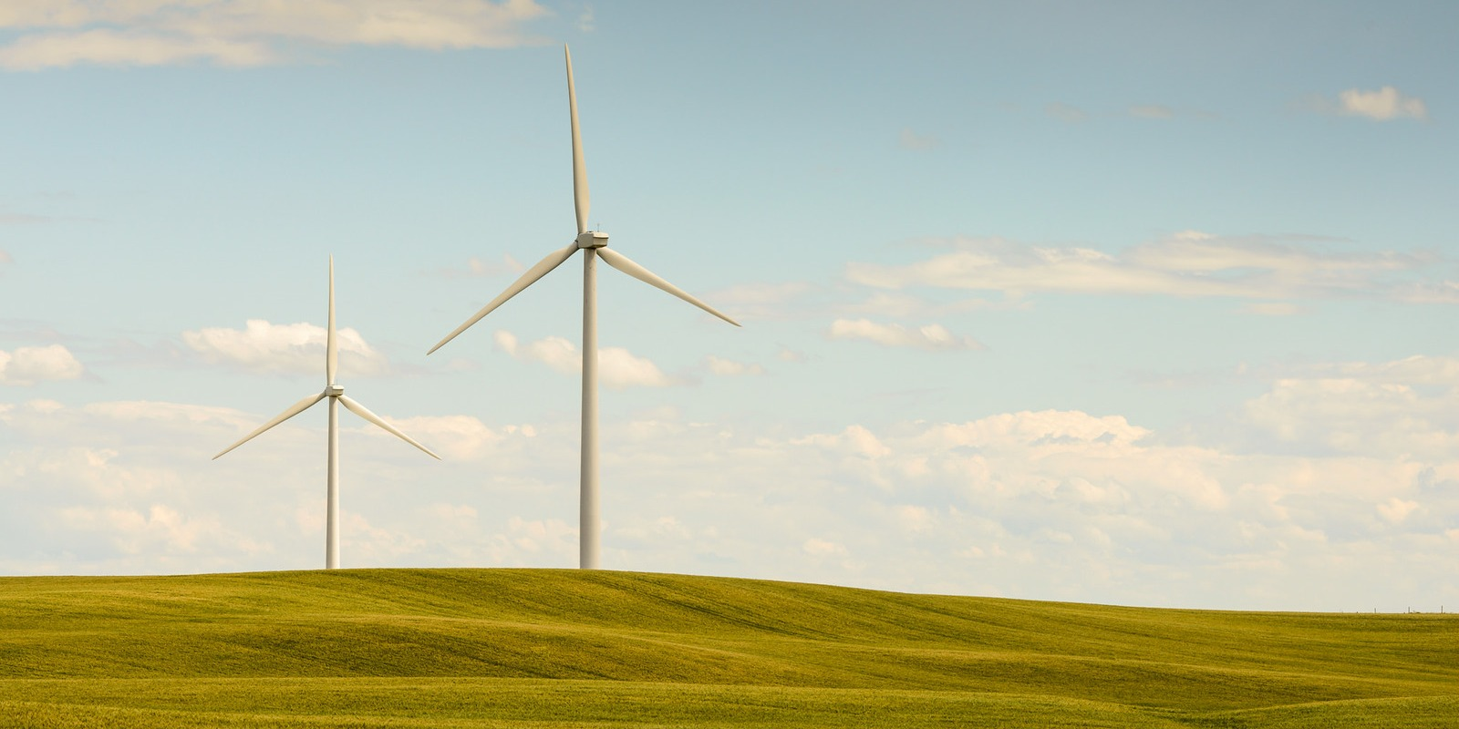 Wayne Stadler Photo Wind Power Alberta 2015-07-26