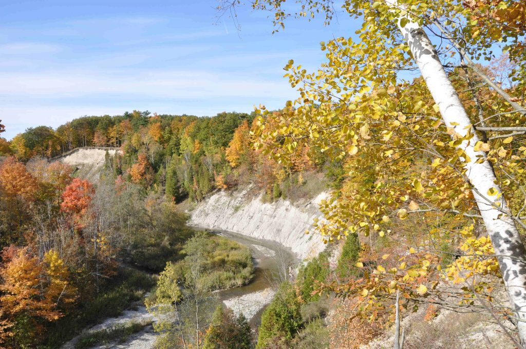 Rouge Valley fall Colours Finch Meander by Jim Robb of FRW Oct 09
