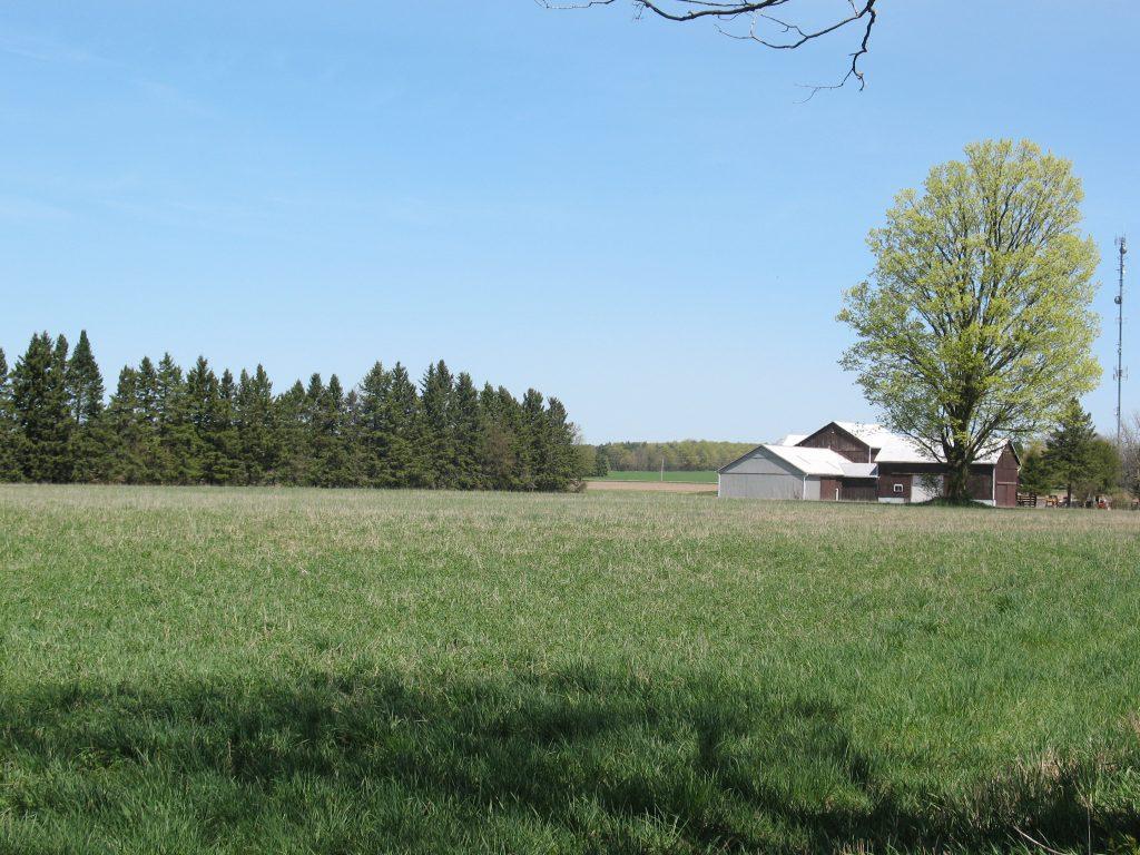 Farm in Midhurst. Photo courtesy of the Midhurst Ratepayers' Association