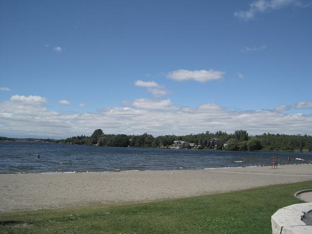 Blue Flag Moonlight beach in Sudbury Ontario