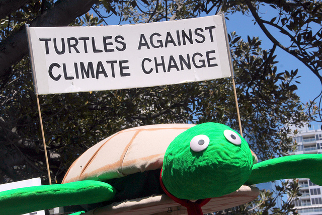 """A giant model turtle carrying a sign: """"Turtles against Climate Change"""""""
