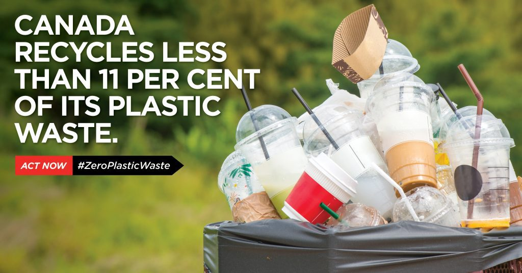 Less than 11 per cent of canada's plastic waste is recycled