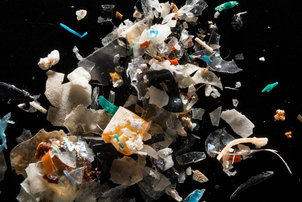 Microplastics from the Rhode River are pictured at the laboratory of Dr. Lance Yonkos in the Department of Environmental Science & Technology at the University of Maryland. Photo Credit: Chesapeake Bay Program