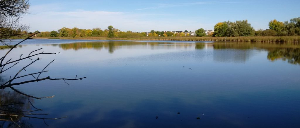 Carruthers Creek MZO